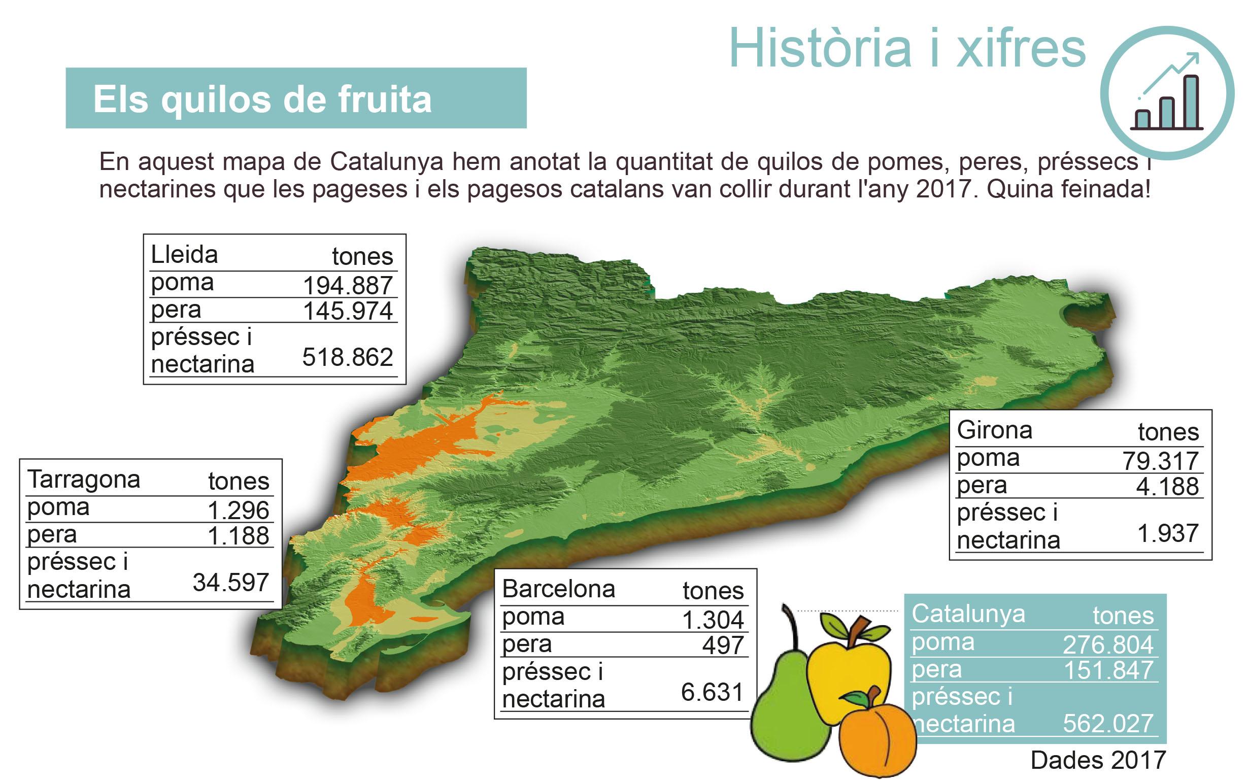 CM-1.2. Producció de fruita