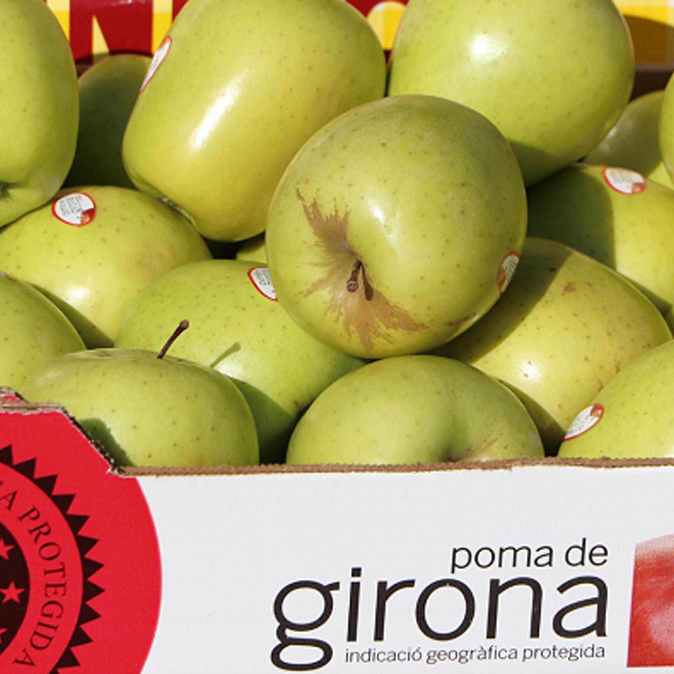 Poma Girona ok